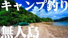 【無人島ソロキャンプ 】野営サバイバル🏕釣った魚を捌いて食べる🐟!