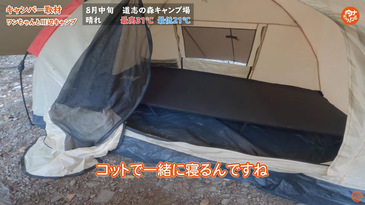 犬 キャンプ どこで寝る コット