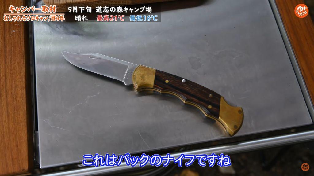 ナイフ:【バック】フォールディングハンター