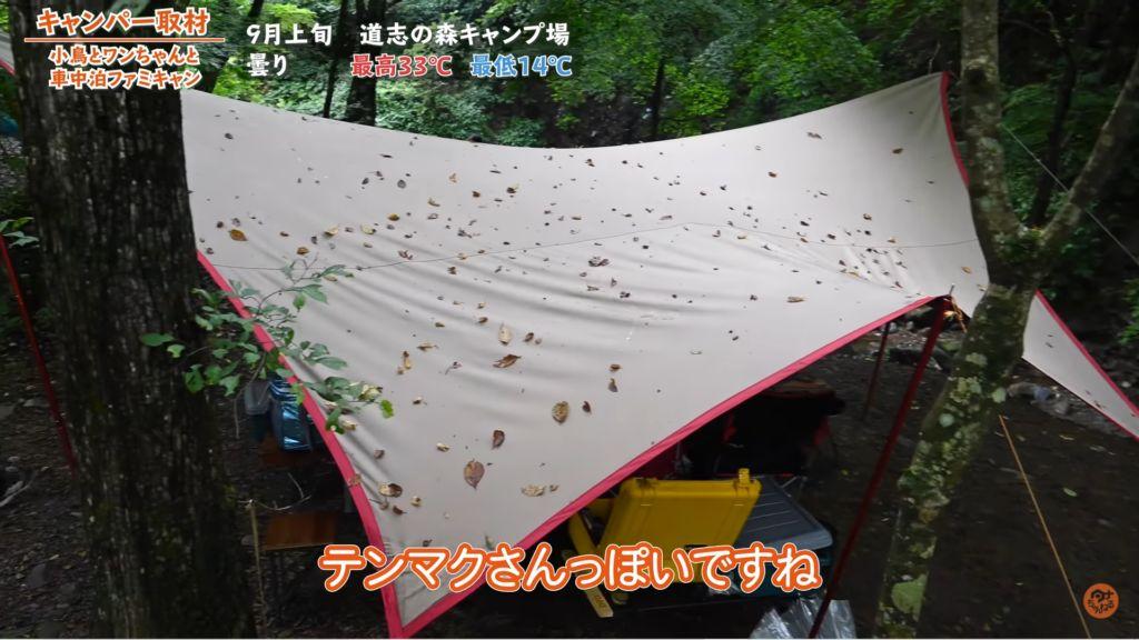 タープ:【tent-mark】