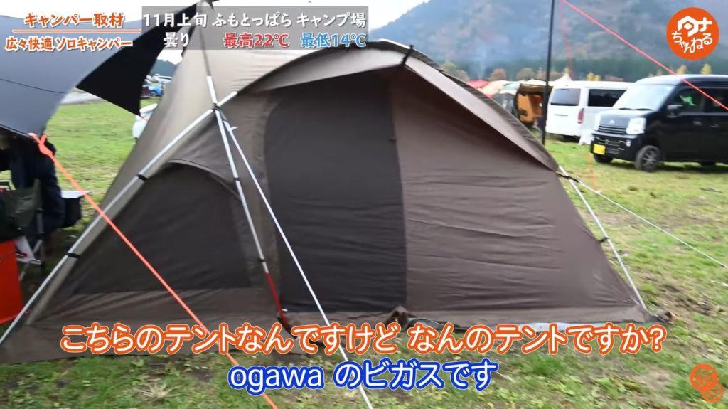 ogawa ヴィガス