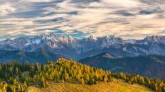 山林が売れない時の対処法は?売却のコツや変更すべきポイントを解説
